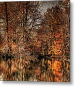 Autumn's End Metal Print by Paul Ward