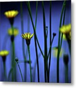 Avatar Flowers Metal Print by Mauro Cociglio - Turin - Italy