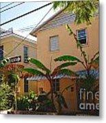 Banana Tree Lane In Key West Metal Print by Susanne Van Hulst