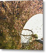 Basketball Hoop Metal Print by Andersen Ross