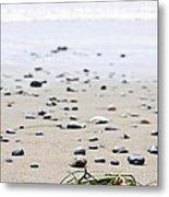 Beach Detail On Pacific Ocean Coast Of Canada Metal Print by Elena Elisseeva