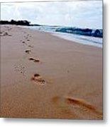 Beaches 04 Metal Print by Earl Bowser