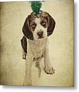 Beagle Puppy Flapper  Metal Print by Susan  Schmitz