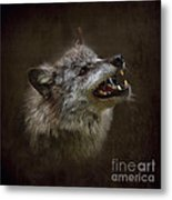 Big Bad Wolf Metal Print by Louise Heusinkveld