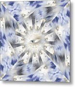 Big Brother - B Metal Print by Linda Cornelius