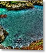 Big Sur Metal Print by Craig Incardone