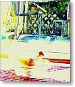 Bird Bath Metal Print by YoMamaBird Rhonda