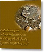 Birthday Party Invitation - Common Toad - Child Metal Print by Mother Nature