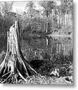 Black And White Fall Alum Creek Metal Print by Monica Lewis