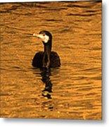 Black Bird On Surise Metal Print by Radoslav Nedelchev
