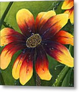 Blanket Flower Metal Print by Trister Hosang