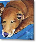 Blue Blanket Metal Print by Pat Saunders-White