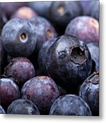Blueberry Background Metal Print by Jane Rix