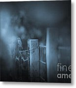Bluebird Metal Print by Kim Henderson