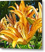 Bold Colorful Orange Lily Flowers Garden Metal Print by Baslee Troutman