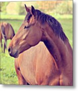Brown Horse Metal Print by Euge de la Peña