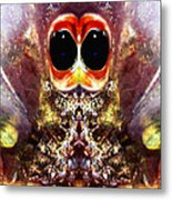 Bug Eyes Metal Print by Skip Nall