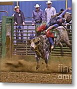 Bull Rider 1 Metal Print by Sean Griffin