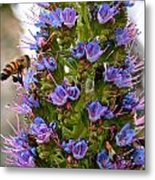 Busy Bee Metal Print by Ruth Edward Anderson