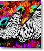 Butterfly Metal Print by Ilias Athanasopoulos
