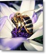 Buzz Wee Bees Metal Print by Lessie Heape