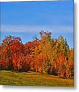 Canada In Colors Metal Print by Aimelle