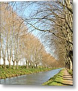 Canal With Tree Metal Print by Teocaramel