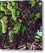 Cascading Grapes Metal Print by Elaine Plesser