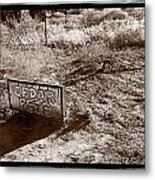 Cedar Pete Gravesite In Grafton Utah Metal Print by Steve Gadomski