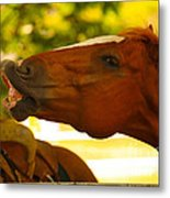 Cheese Metal Print by Cheryl Young