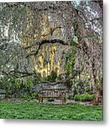 Cherry Blossoms At The Washington National Cathedral Metal Print by Metro DC Photography