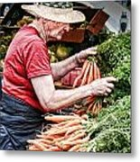 Choosing Carrots Metal Print by Norma Warden