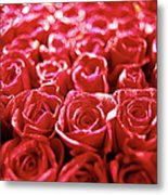 Close-up Of A Mass Of Red Roses Metal Print by Stockbyte