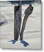 Coastal Driftwood Art Prints Ocean Shore Sand Beach Metal Print by Baslee Troutman
