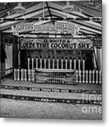 Coconut Shy 2 Metal Print by Adrian Evans