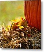 Colorful Autumn Metal Print by Nava Thompson