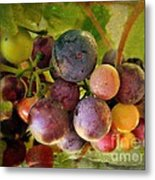 Colors Of Wine Metal Print by Kevin Moore