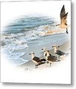 Coming In For A Landing Metal Print by Kristin Elmquist