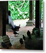 Communing With The Birds Metal Print by Steve Taylor