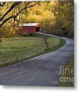 Country Lane - D007732 Metal Print by Daniel Dempster