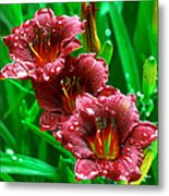 Crimson Lilies In April Shower Metal Print by Lisa  Spencer