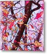 Crisp Autumn Day Metal Print by Judi Bagwell