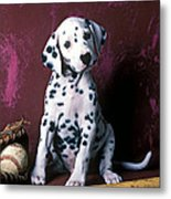 Dalmatian Puppy With Baseball Metal Print by Garry Gay