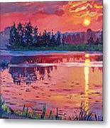 Daybreak Reflection Metal Print by David Lloyd Glover