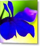 Deeply Blue Metal Print by Marie Jamieson