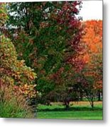 Distant Fall Color Metal Print by Scott Hovind