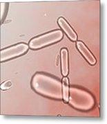Dividing Bacteria, Computer Artwork Metal Print by Robert Brocksmith