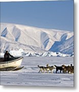 Dog Sled, Qaanaaq, Greenland Metal Print by Louise Murray