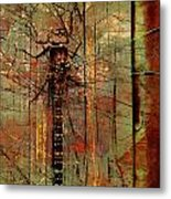 Dragons Wall  Metal Print by JC Photography and Art