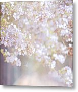 Dreaming Of Spring Metal Print by Jenny Rainbow